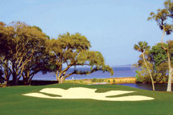 golf courses on hilton head