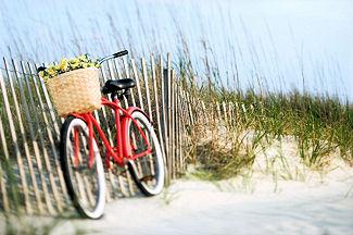 Bikes Hilton Head hilton head bike rentals