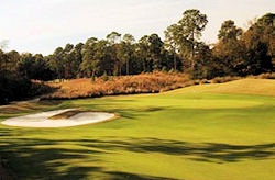 hilton-head-national-golf-course