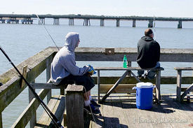 Hunting island state park sc favorite south carolina for Hilton head fishing pier