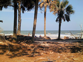 hunting-island-state-park-sc