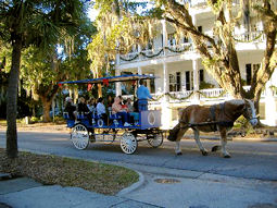 beaufort county south carolina horse and buggy