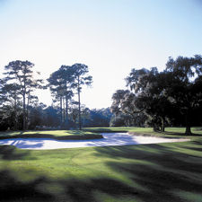 hilton head golf courses harbour town golf links