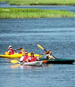 hilton head kayaking