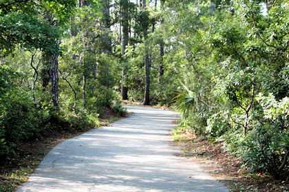 Best Bikes On Hilton Head Island Sea Pines Plantation Bike Path